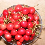 Bowl-of-Cherries_122702-150x150 trešnje free