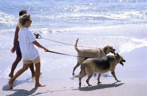 par sa psima na obali free