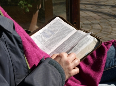 biblija free