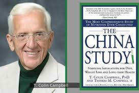 china study (slika)