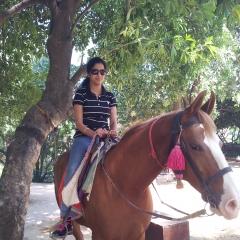 devojka na konju free